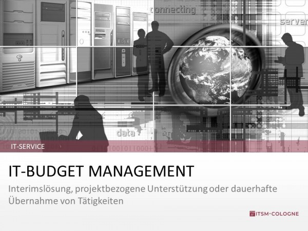 IT-Service IT-Budget Management